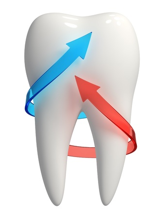 3d rendered photo-realistic white tooth with blue and red semi-transparent arrows pointing upward - Isolated icon on white background photo