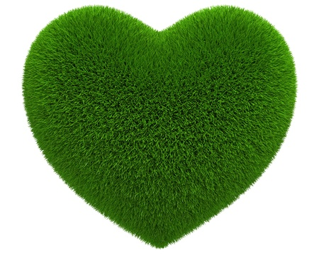 Photo-realistic 3d render of an isolated grass heart Stock Photo - 12181371