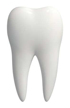 mouth teeth: Picture-realistic illustration of a white tooth - isolated icon