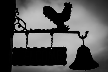 crowing: Signs Chicken Very beautiful silhouette.
