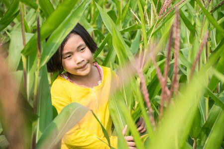 yellow shirt: The Girl in yellow shirt is happy in cornfield.