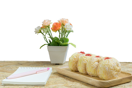 christmas cactus: Bakery on plywood background and White background with book and flower.