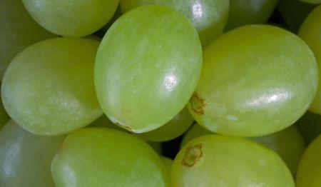Macro view of grapes