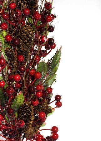 Red berry floal display on white Stock Photo