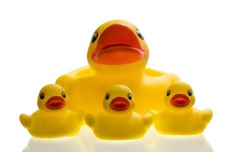 Yellow plastic ducks on white Stock Photo
