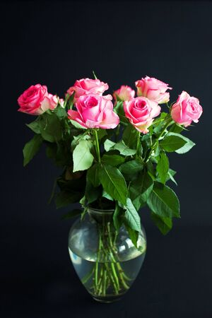 Pink roses in a vase with a black background Stock Photo