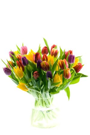 Beautiful brightly clored tulips in a clear glass vase