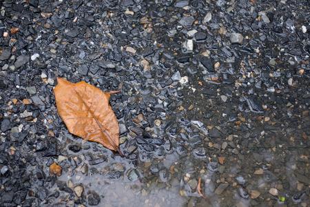 soak: water soak on floor full of rock and stone background