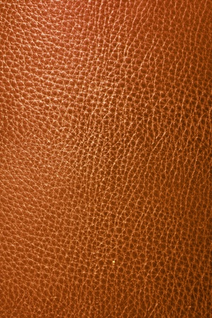 bumpy: Brown leather texture closeup. Useful as background for design-works