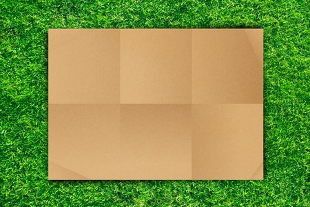 Empty Brown Crumpled paper on Grass background Stock Photo - 13229919