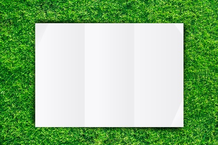 Empty White Crumpled paper on Grass background Stock Photo - 13229917