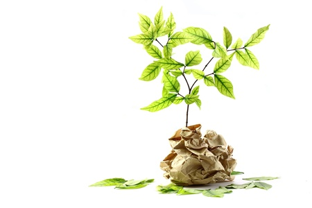 reciclaje de papel: Ecología concepto. pequeña planta de papel reciclado en el fondo blanco
