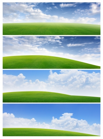 image size: Collection of horizontal field of grass and blue sky banners  Image size 3000 1000 pixels