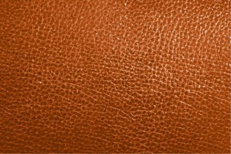 seamless leather: Vector Leather texture background