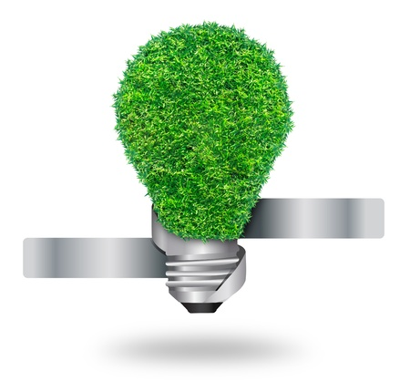 green grass bulb as symbol of sustainable energy and nature protection, isolated on white background With Save Paths for design work Stock Photo - 18153789