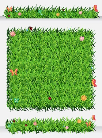 Green Grass Backgrounds, Ecological concept Vector Illustration template design Stock Vector - 19551908