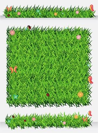 Green Grass Backgrounds, Ecological concept Vector Illustration template design Stock Vector - 19551908