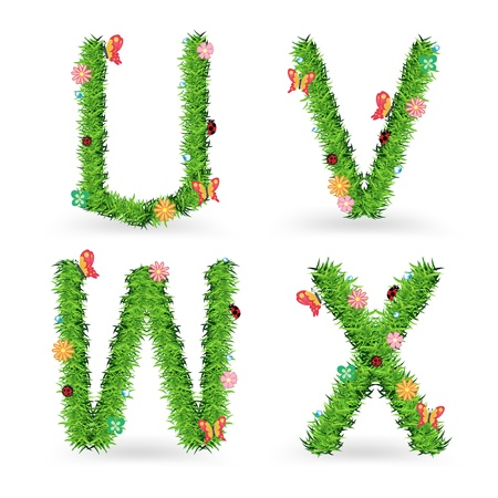 Grass font, Creative ecological concept vector illustration template design  Vector