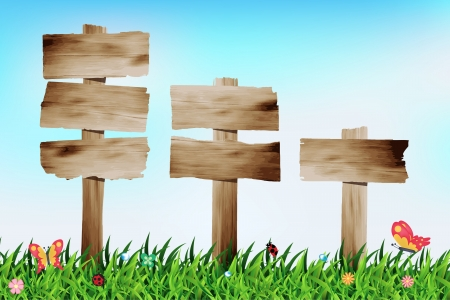 Wooden signboard with grass field, Vector illustration template design Vector