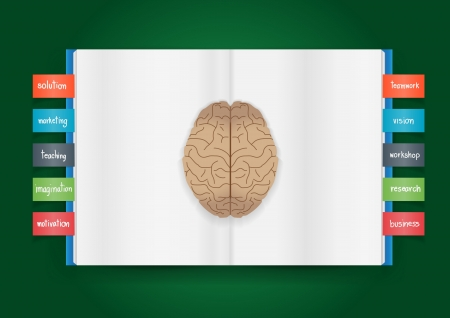 Book and brain of business concept, Vector illustration template design Vector