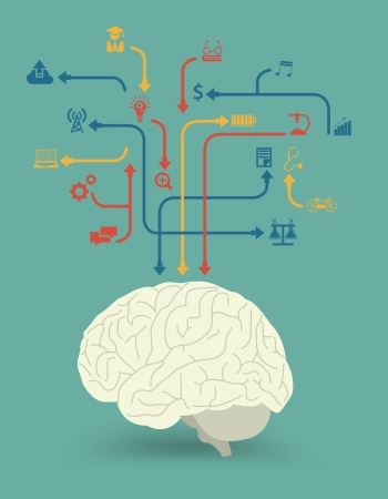 Creative brain power for different purposes with icon idea concept, Vector illustration modern design template, workflow layout, diagram, step up options