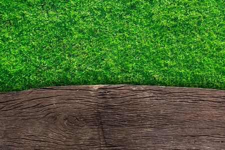 summer sign: wooden with green grass background