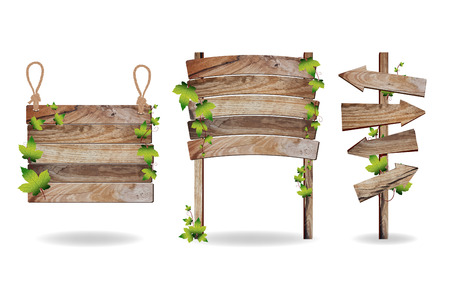 Wooden signs with green leaves decorative elements, Vector illustration template design
