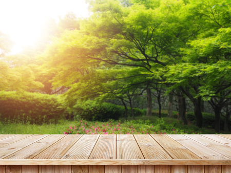 Table top and blur nature of the background, Green grass and trees beauty nature background. Stockfoto