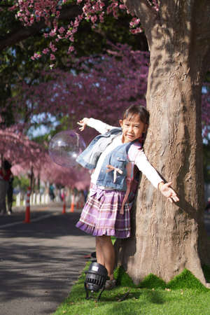 Asian little girl in garden under the blossom sakura tree background Zdjęcie Seryjne - 159023941