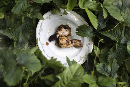 broiled: broiled chicken legs tucked into a plate