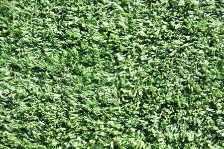 Artificial green grass at stadium. Macro