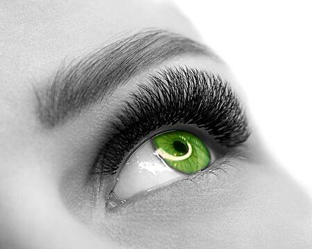 Ojo verde abierto de mujer con extensión de pestañas. Piel bien cuidada, disparo macro, blanco y negro, primer plano, enfoque selectivo. Foto de archivo