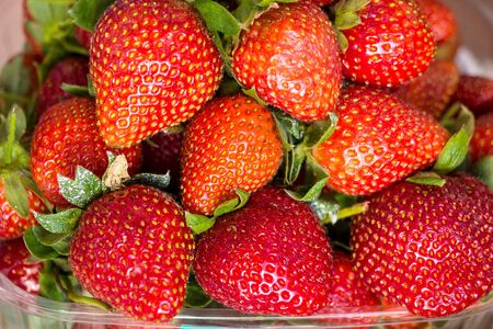 Fresh ripe strawberries with sepals in a plastic container, close up. Fruits, local market, natural products, healthy diet, vegan and solar food