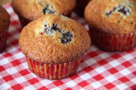bilberry: Muffins with a bilberry