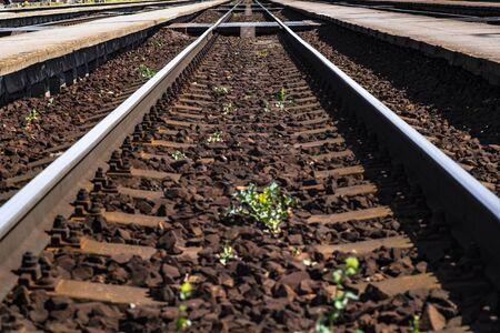 Railroad tracks run straight. Railroad track. Road for travel.
