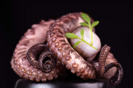 Delicious sea food.Octopus on a black background with greens. Fish food. Seafood.