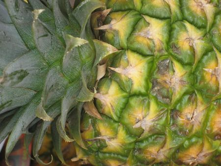 Pineapple Detail