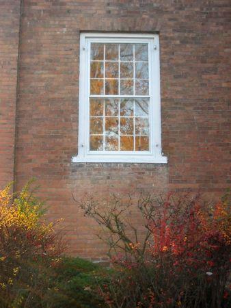 whitewashed: Whitewashed window set in a brick wall above autumn foliage Stock Photo