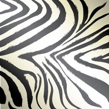fell: Zebra pink background