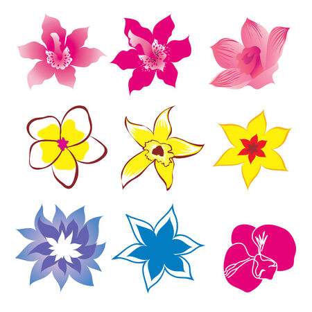 botanics: Set of flower design elements