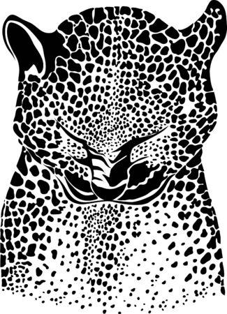 fell: leopard