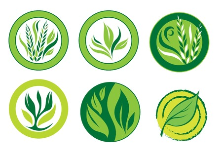 Green logos Stock Vector - 5051439