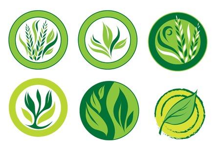 Green logos Stock Vector - 5051439