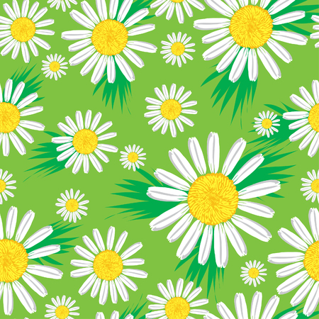 a bud  a sprout  a shoot: Seamless cute floral pattern with bright camomiles (from my  Illustration