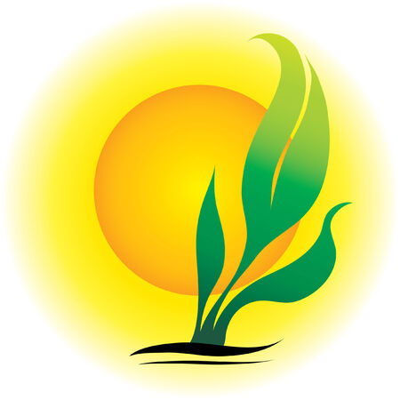 benign: illustration of green fresh sprout and the Sun Illustration