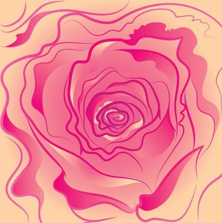 Pink rose flower Stock Vector - 5145019