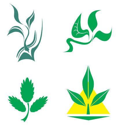 benign: green fresh sprout Illustration