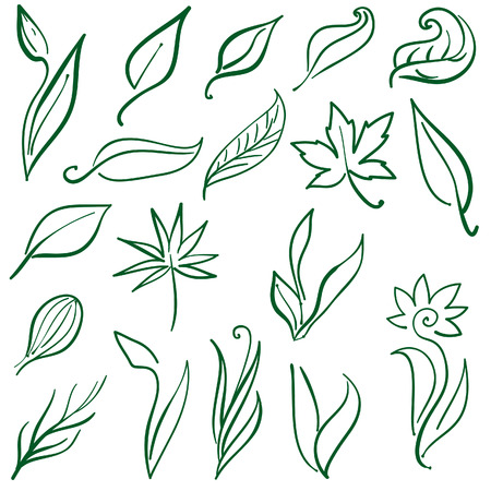 leaf line: Set of free hand illustrations of leafs and plants