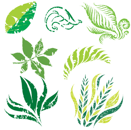 chit: Set of leafs and plants design elements Illustration