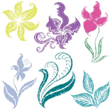 Set of colorful grunge flower design elements Vector